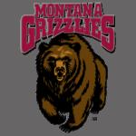 Montana Grizzlies Football Schedule